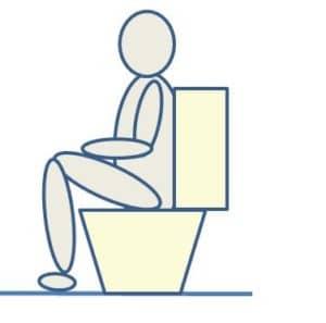 low toilet